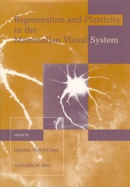 Regeneration and Plasticity in the Mammalian Visual System, Volume 4